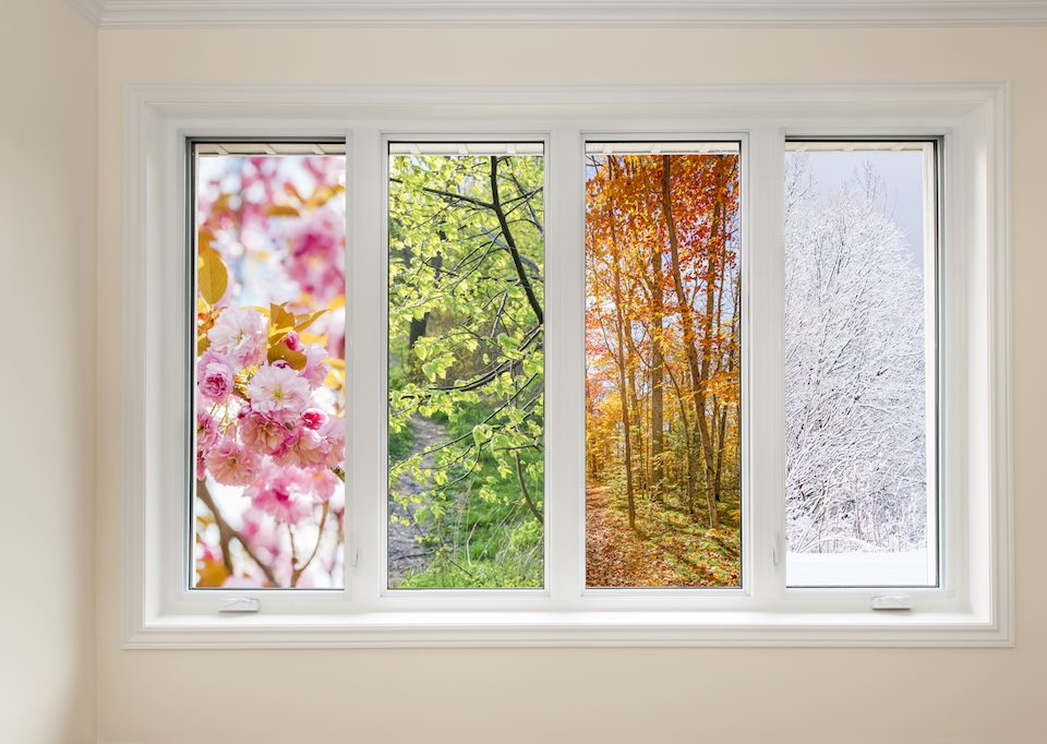 Window view of four seasons