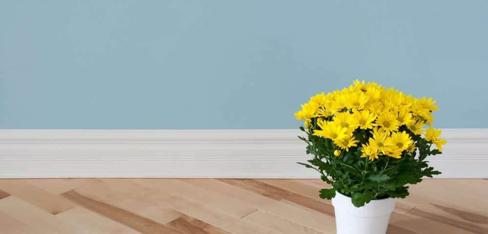 Tips for Painting Baseboards and Interior Trim